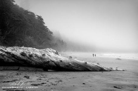 Tips For Composing In Black And White